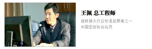 权威专家-王佩总工程师